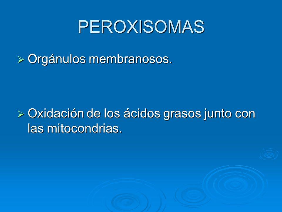 PEROXISOMAS Orgánulos membranosos.