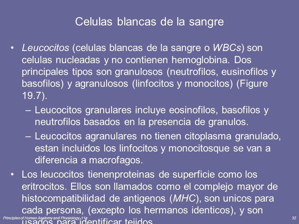 Celulas blancas de la sangre