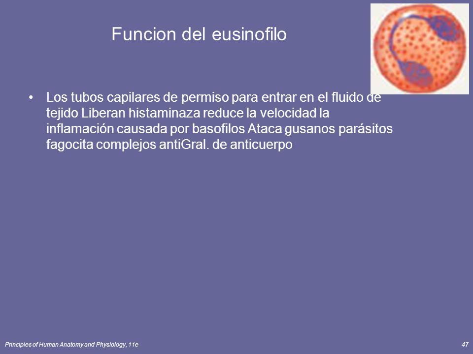 Funcion del eusinofilo