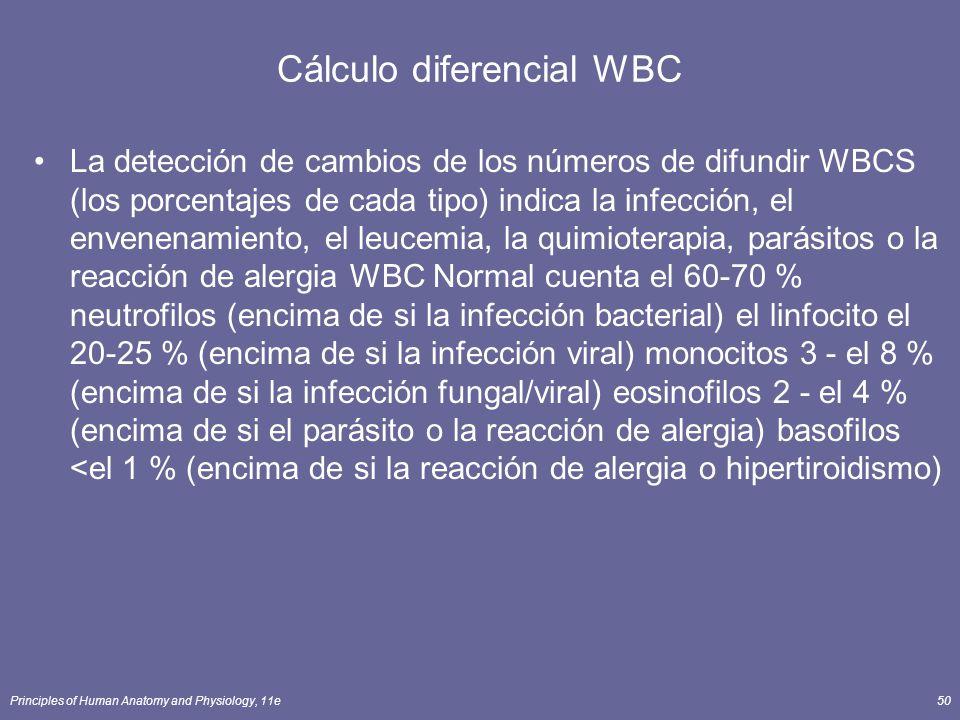 Cálculo diferencial WBC