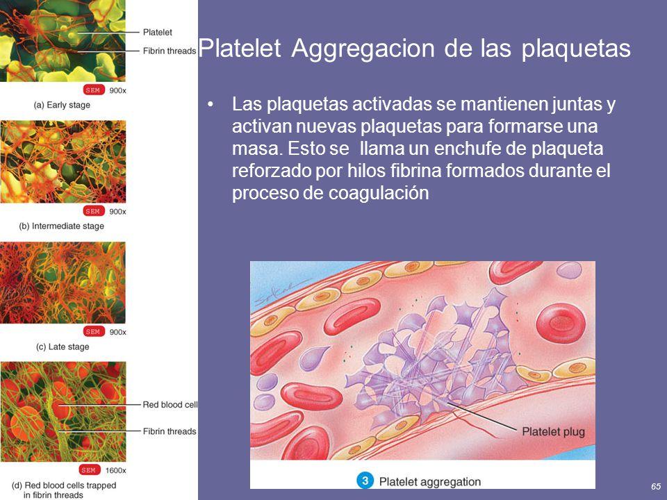 Platelet Aggregacion de las plaquetas