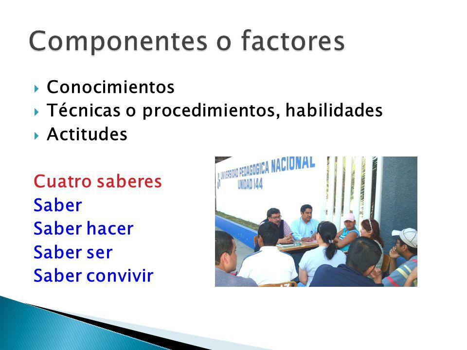 Componentes o factores