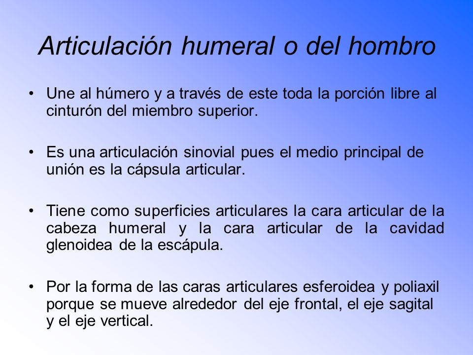 Articulación humeral o del hombro