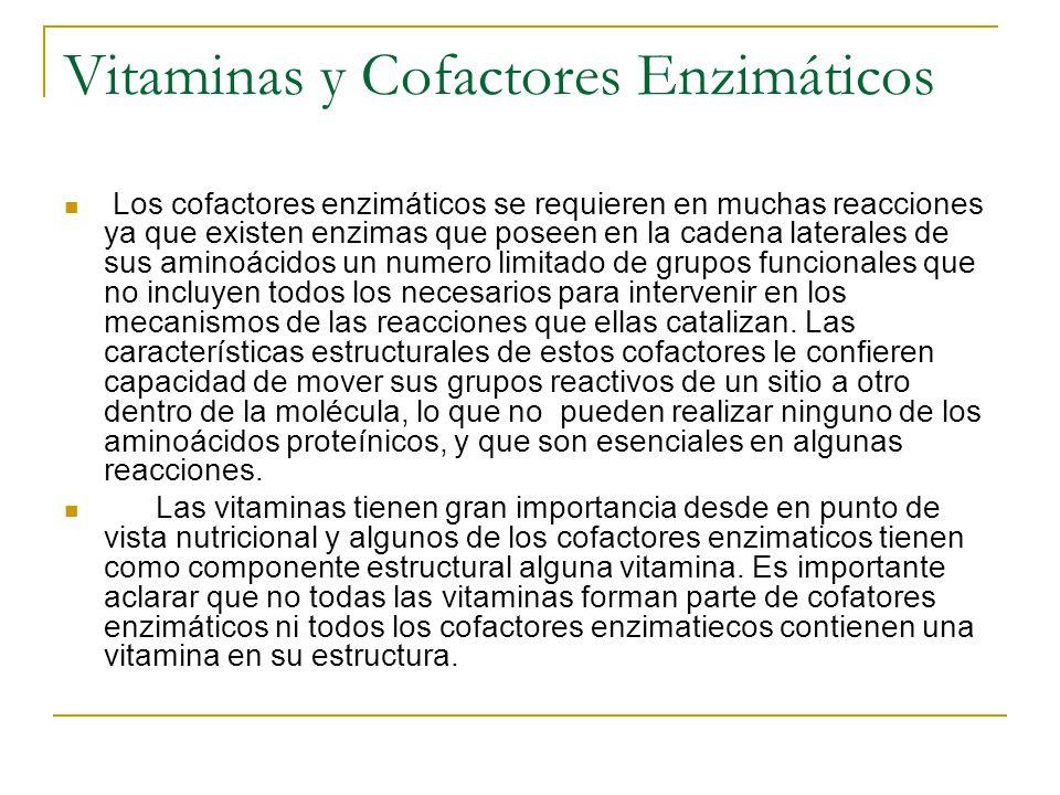 Vitaminas y Cofactores Enzimáticos
