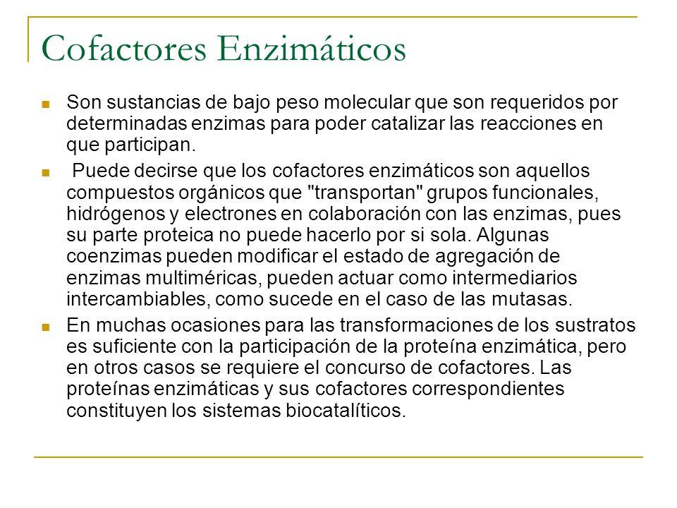 Cofactores Enzimáticos