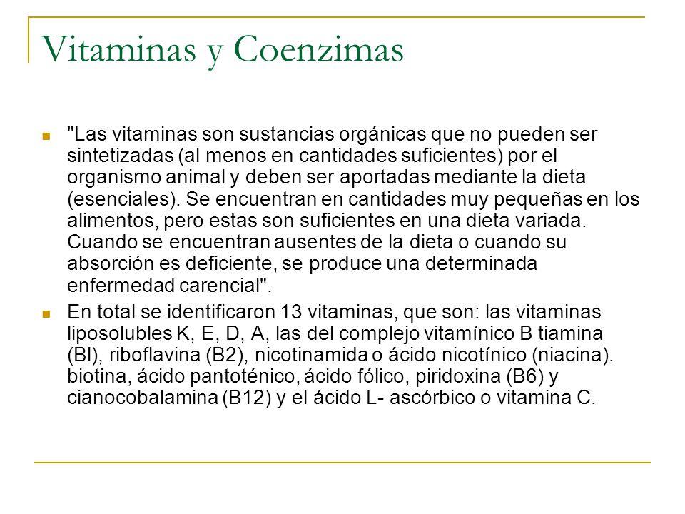 Vitaminas y Coenzimas