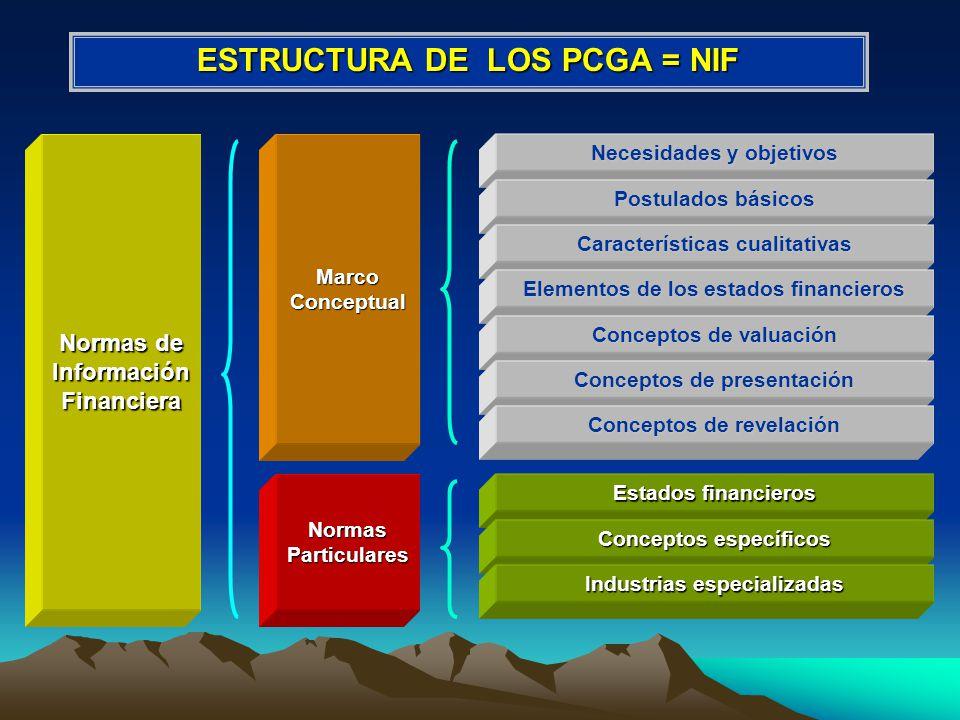 ESTRUCTURA DE LOS PCGA = NIF