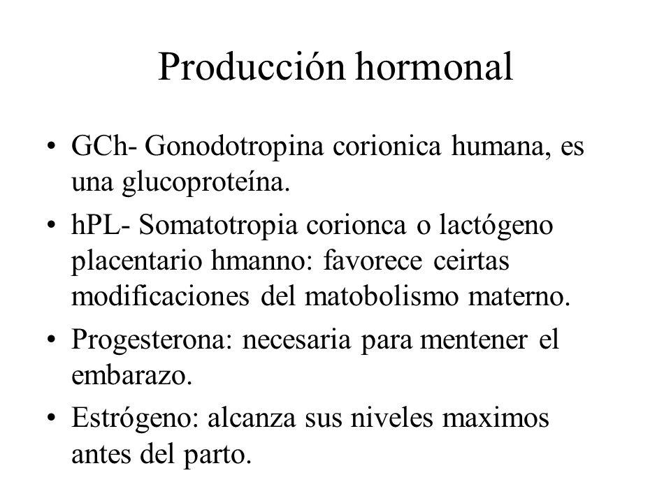 Producción hormonal GCh- Gonodotropina corionica humana, es una glucoproteína.