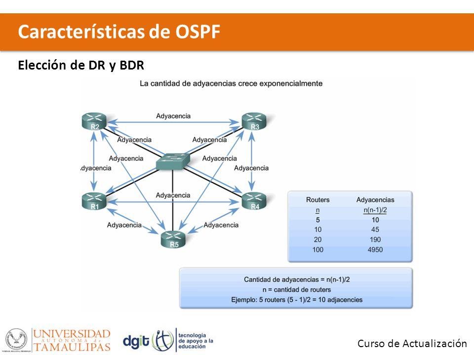 Características de OSPF