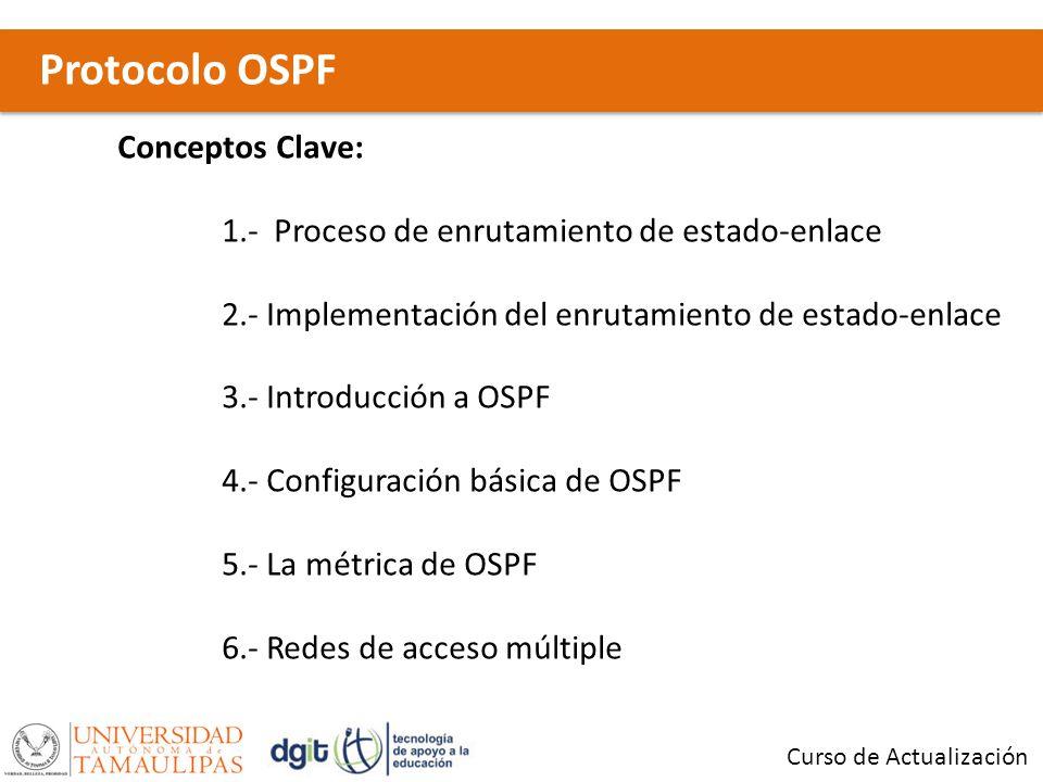 Protocolo OSPF Conceptos Clave: