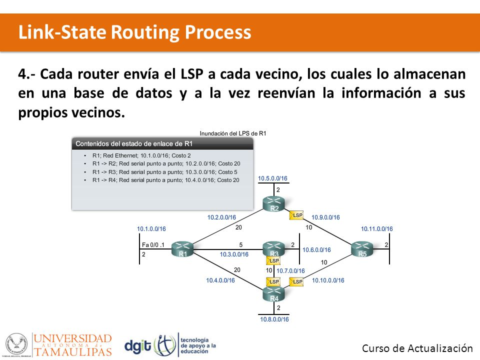 Link-State Routing Process