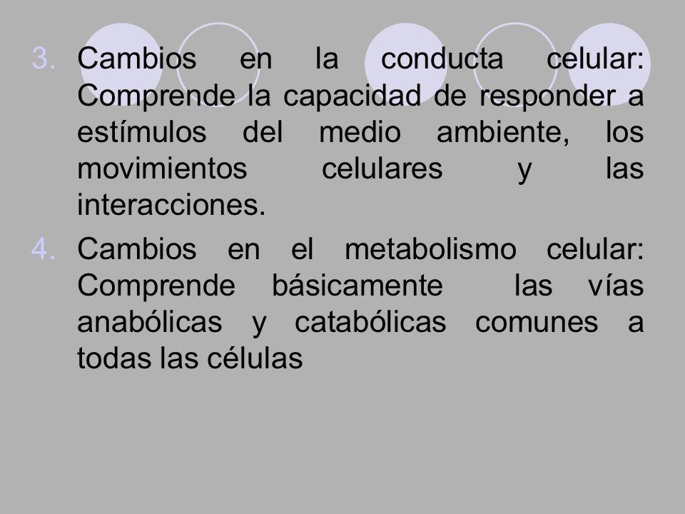Cambios en la conducta celular: Comprende la capacidad de responder a estímulos del medio ambiente, los movimientos celulares y las interacciones.