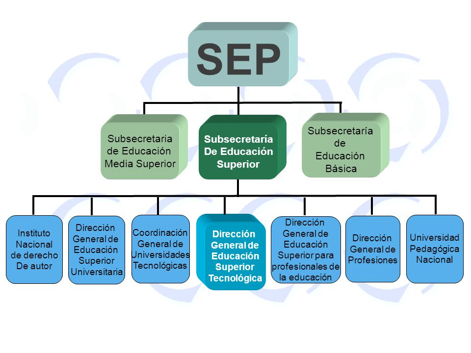 SEP Subsecretaría Subsecretaria Subsecretaría de de Educación