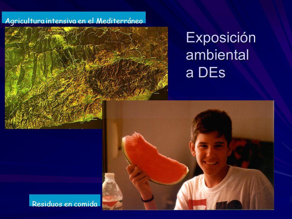 Exposición ambiental a DEs
