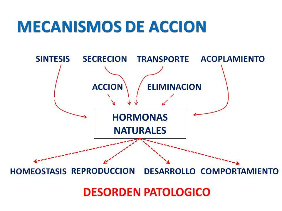 MECANISMOS DE ACCION DESORDEN PATOLOGICO HORMONAS NATURALES SINTESIS