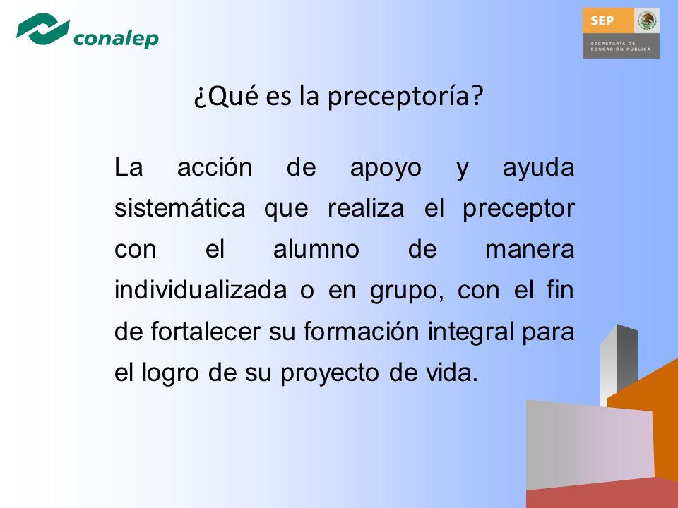 ¿Qué es la preceptoría