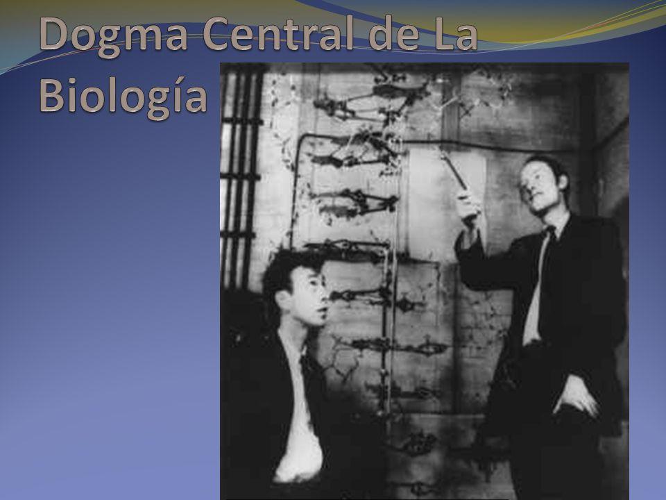 Dogma Central de La Biología
