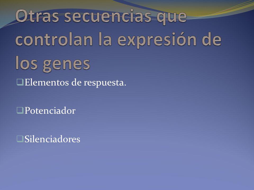 Otras secuencias que controlan la expresión de los genes