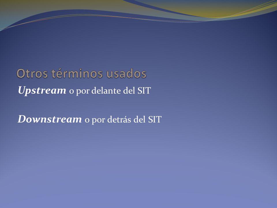 Otros términos usados Upstream o por delante del SIT