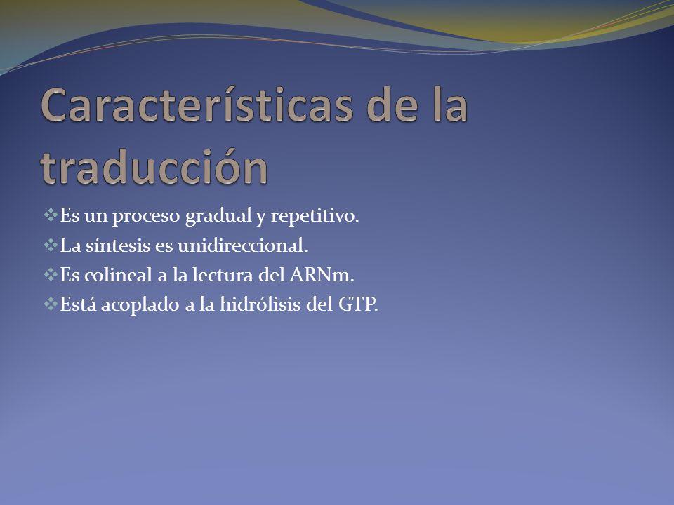 Características de la traducción