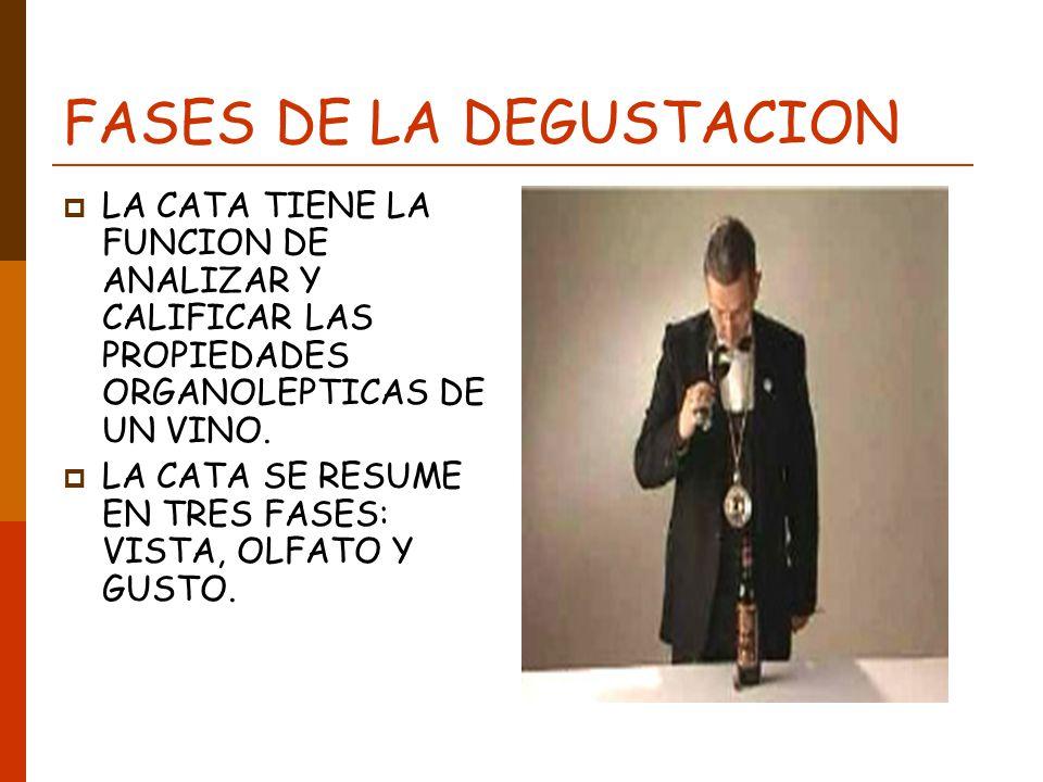 FASES DE LA DEGUSTACION