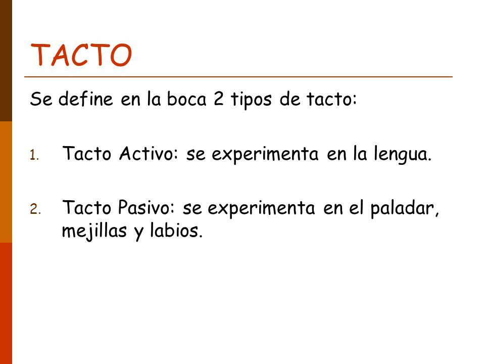TACTO Se define en la boca 2 tipos de tacto: