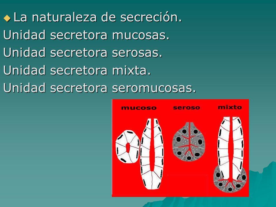 La naturaleza de secreción.