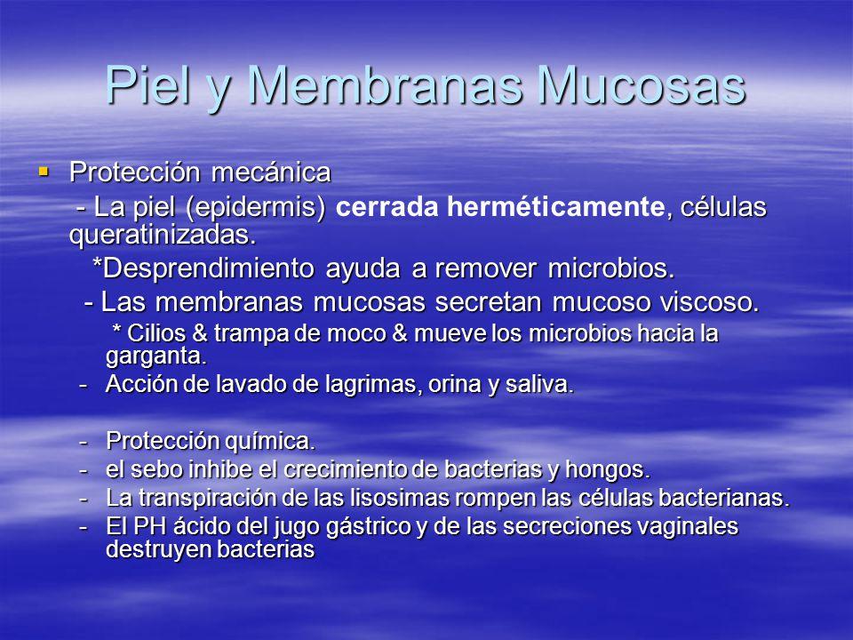 Piel y Membranas Mucosas