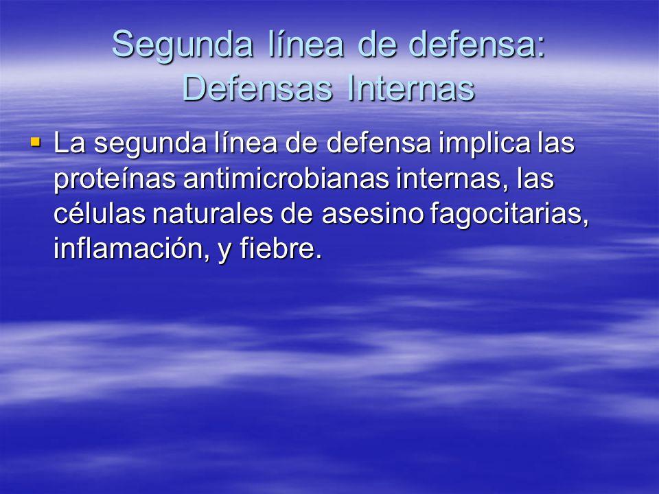 Segunda línea de defensa: Defensas Internas