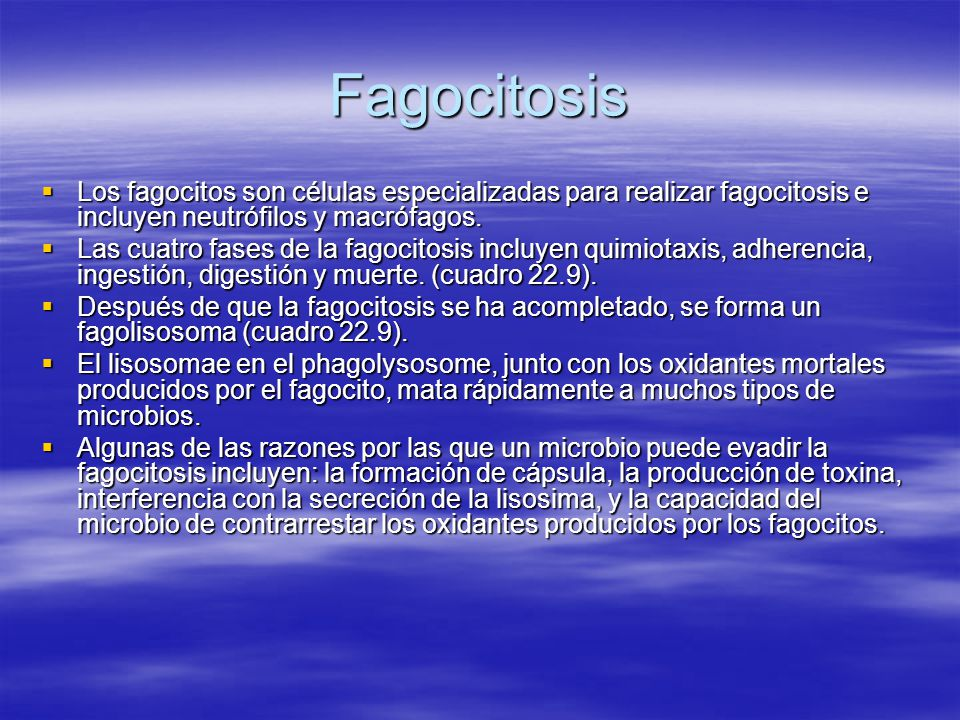Fagocitosis Los fagocitos son células especializadas para realizar fagocitosis e incluyen neutrófilos y macrófagos.