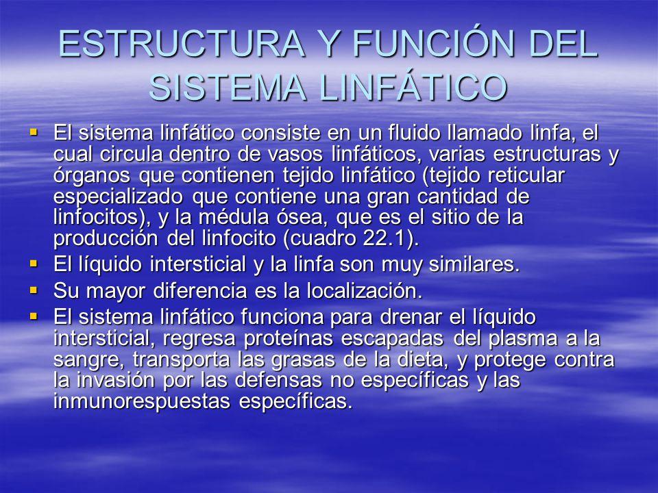 ESTRUCTURA Y FUNCIÓN DEL SISTEMA LINFÁTICO