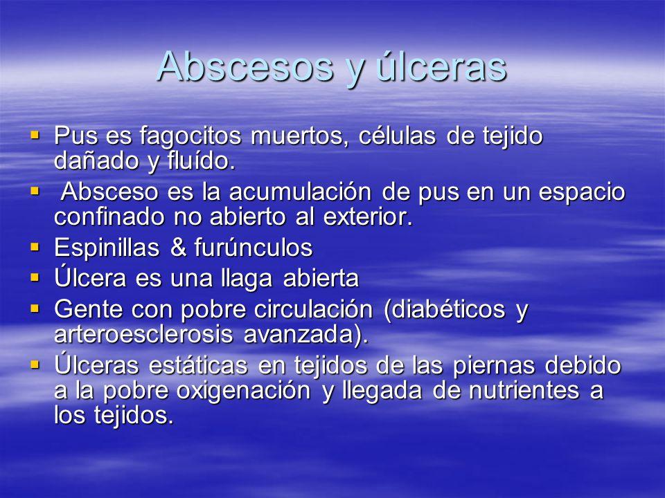Abscesos y úlceras Pus es fagocitos muertos, células de tejido dañado y fluído.