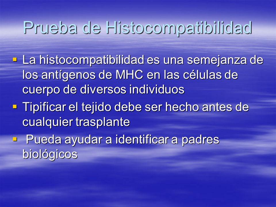 Prueba de Histocompatibilidad