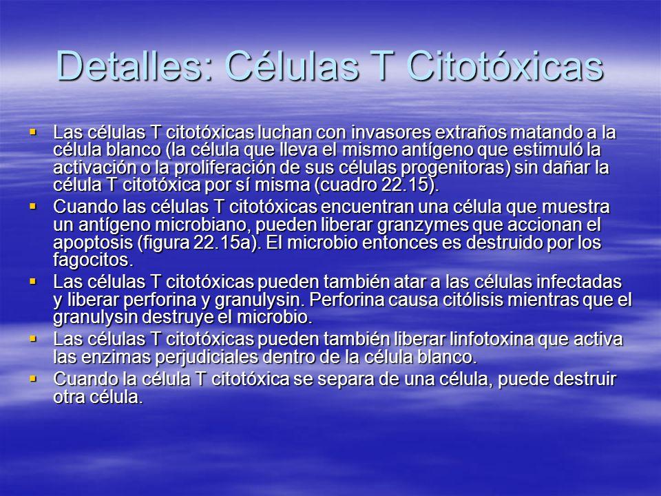 Detalles: Células T Citotóxicas