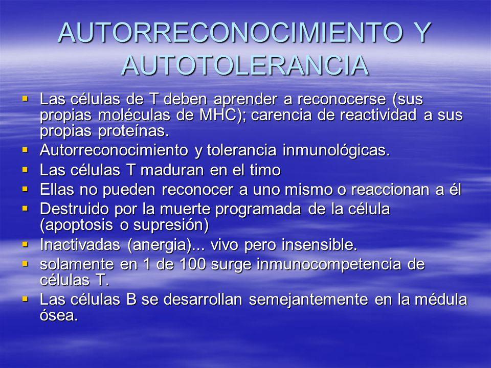 AUTORRECONOCIMIENTO Y AUTOTOLERANCIA