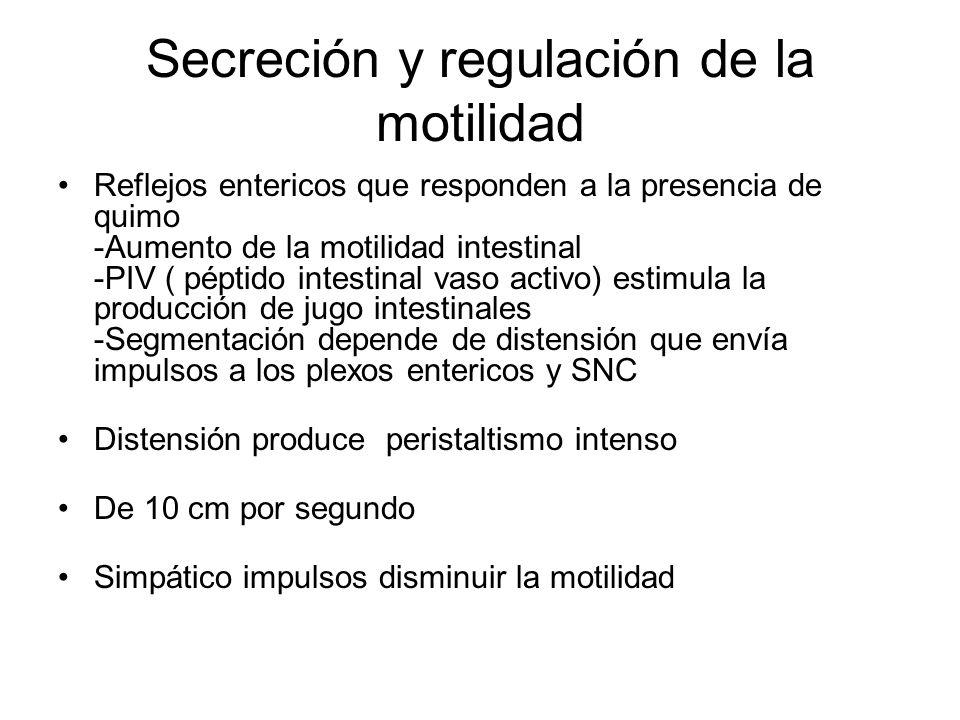 Secreción y regulación de la motilidad