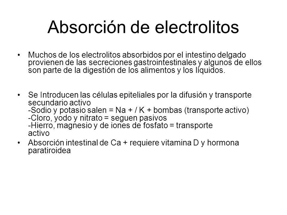 Absorción de electrolitos