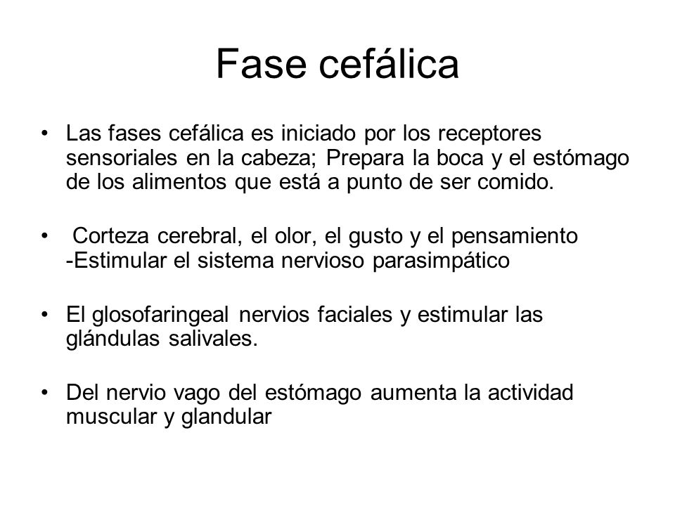 Fase cefálica
