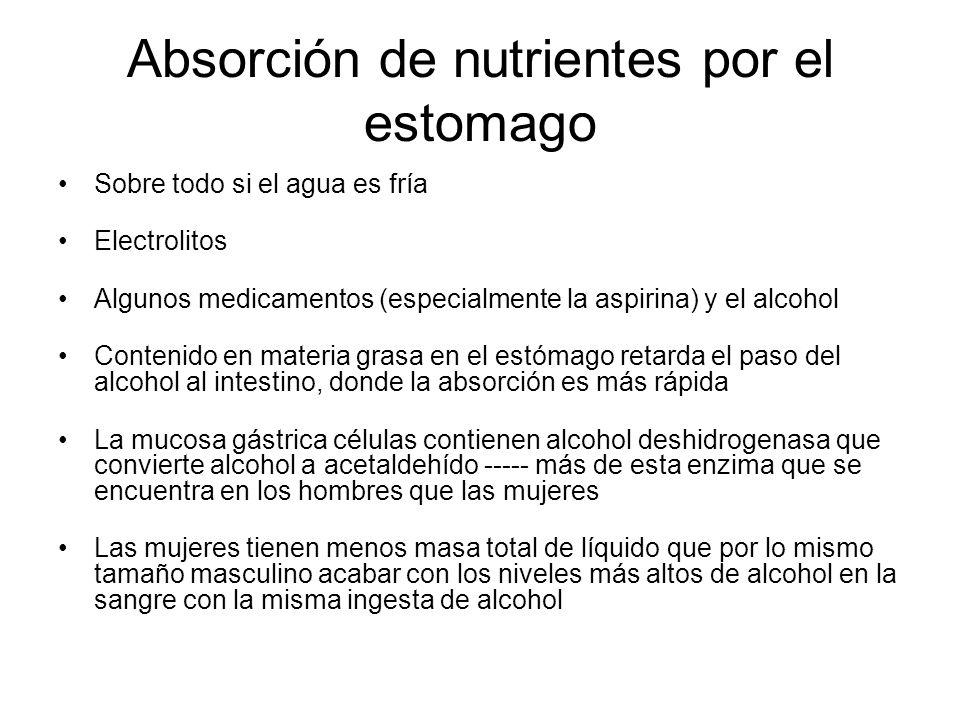 Absorción de nutrientes por el estomago