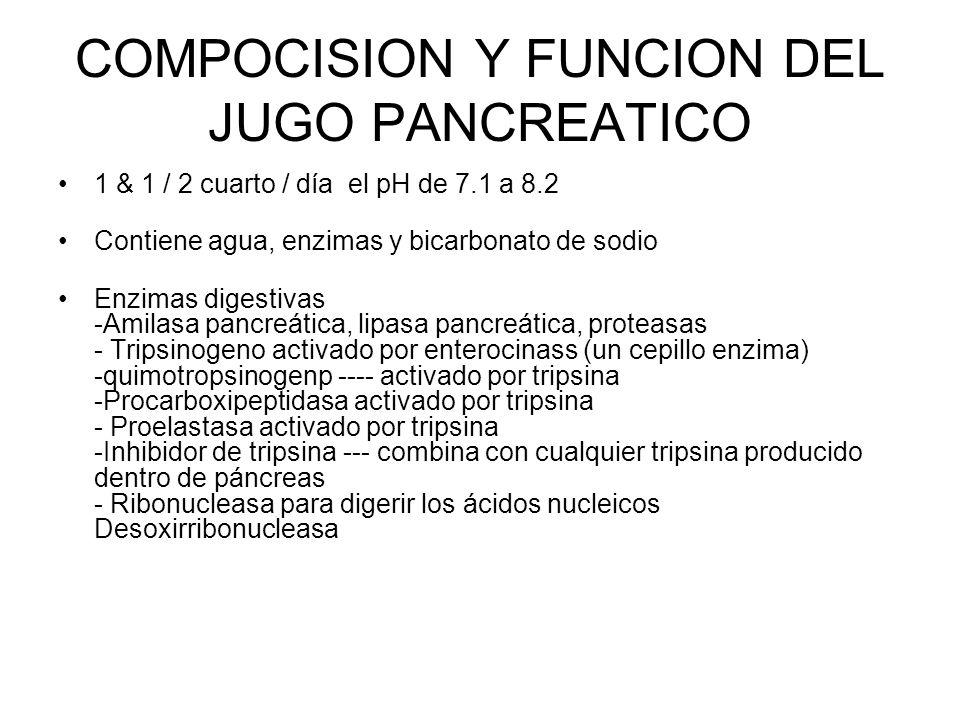 COMPOCISION Y FUNCION DEL JUGO PANCREATICO