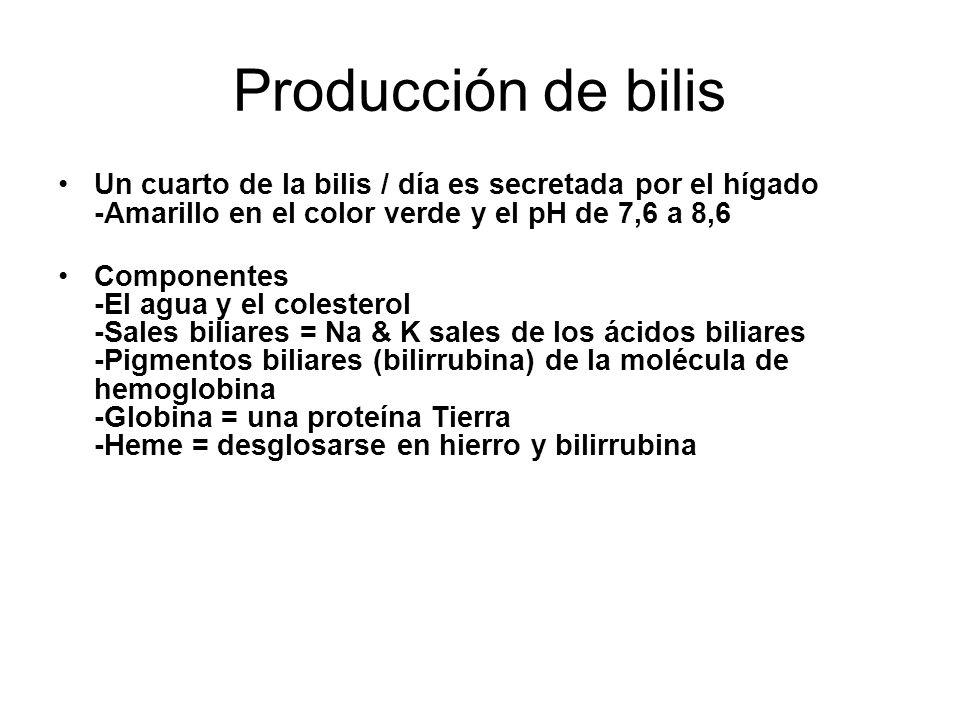 Producción de bilis Un cuarto de la bilis / día es secretada por el hígado -Amarillo en el color verde y el pH de 7,6 a 8,6.
