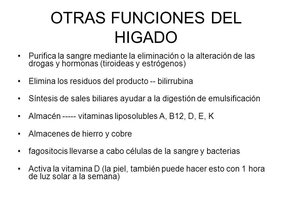 OTRAS FUNCIONES DEL HIGADO