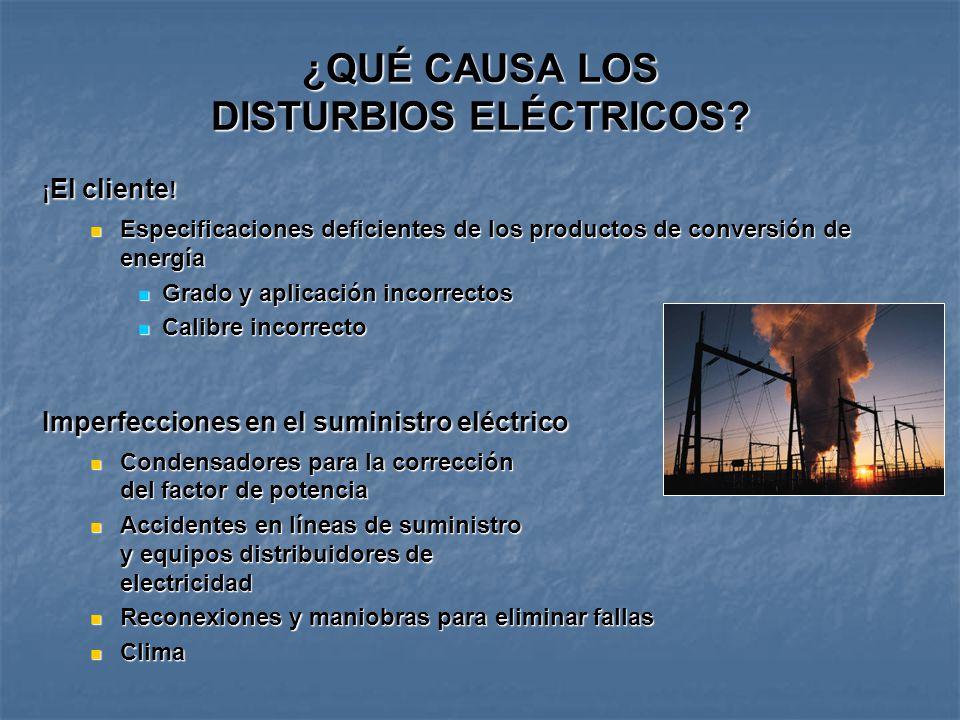 ¿QUÉ CAUSA LOS DISTURBIOS ELÉCTRICOS