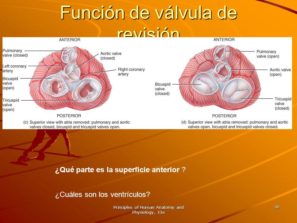 Función de válvula de revisión