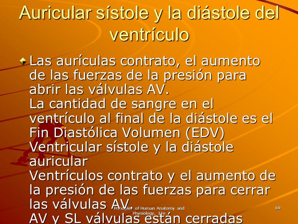 Auricular sístole y la diástole del ventrículo