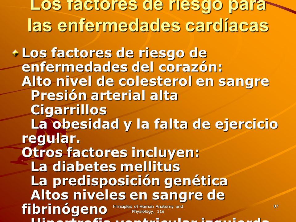 Los factores de riesgo para las enfermedades cardíacas