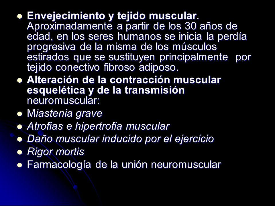 Envejecimiento y tejido muscular
