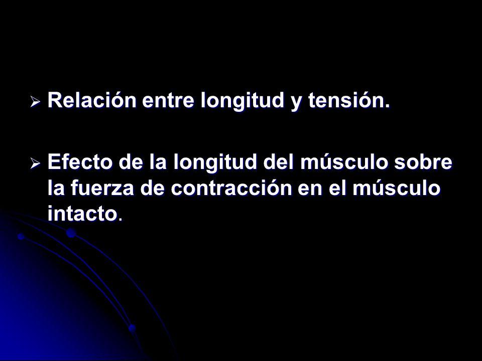 Relación entre longitud y tensión.