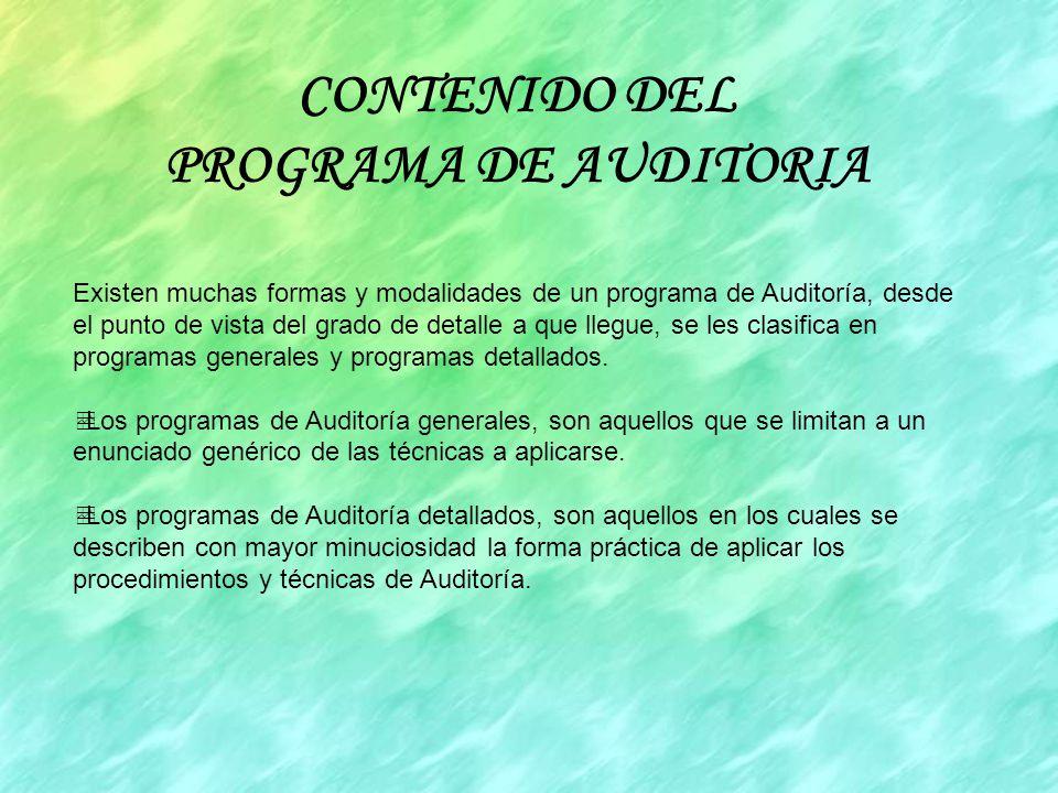 CONTENIDO DEL PROGRAMA DE AUDITORIA