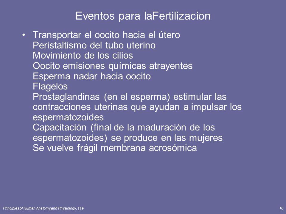 Eventos para laFertilizacion